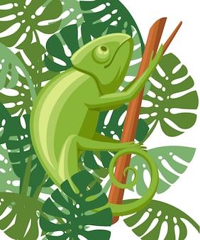 Kreskówka kameleon wspiąć się na gałąź. mała zielona jaszczurka. projektowanie logo kameleona, płaska ikona. ilustracja na białym tle z zielonymi liśćmi.