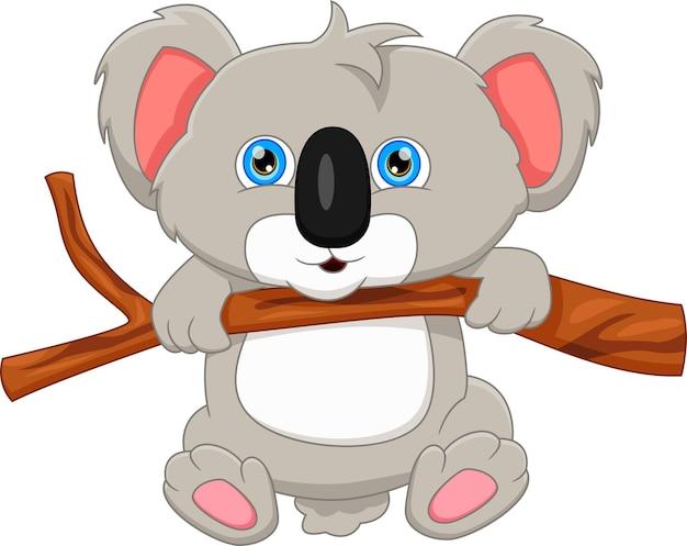 Kreskówka koala wisi na drzewie