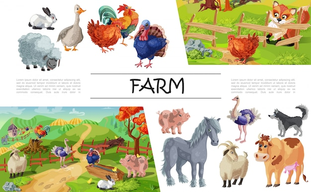 Kreskówka kompozycja zwierząt gospodarskich z królika gęś koguta owca świnia indyk koń koza pies krowa strusia lis patrząc na kurczaka