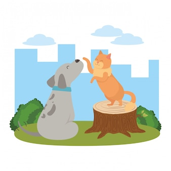 Kreskówka kot i pies