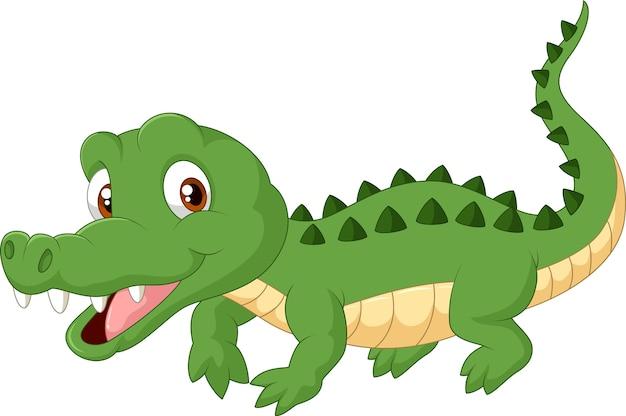 Kreskówka krokodyl
