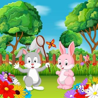 Kreskówka królik pary z motylem