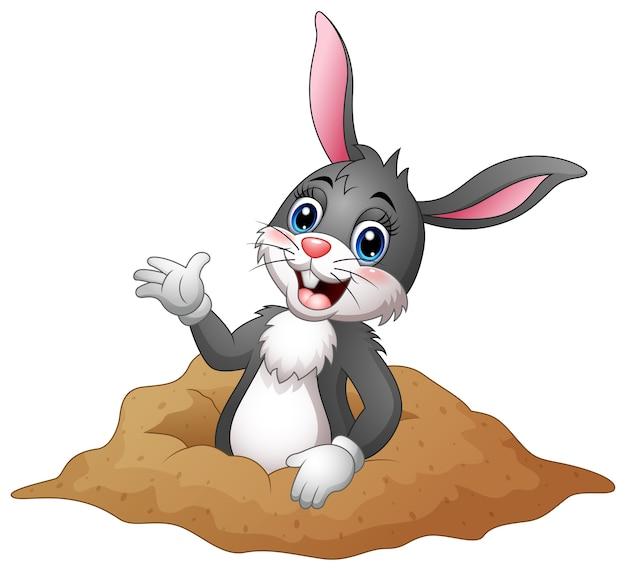 Kreskówka królik z dziur w ziemi