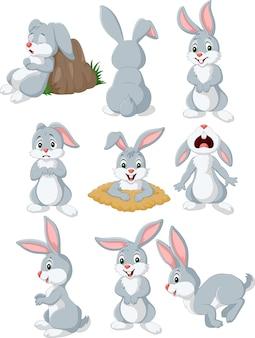 Kreskówka królik z różną pozą i wyrażeniem