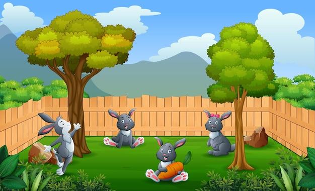 Kreskówka króliki bawiące się w gospodarstwie