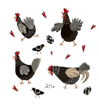 Kreskówka kurczak i jajka na białym tle.