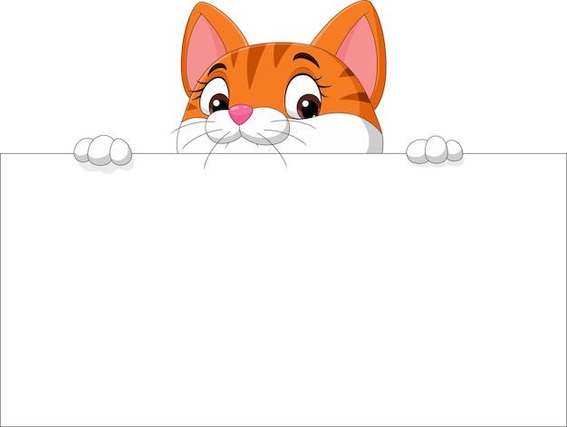 Kreskówka ładny kotek z pustą tablicą
