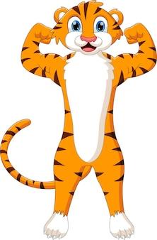 Kreskówka ładny tygrys pozuje popisując się mięśniami