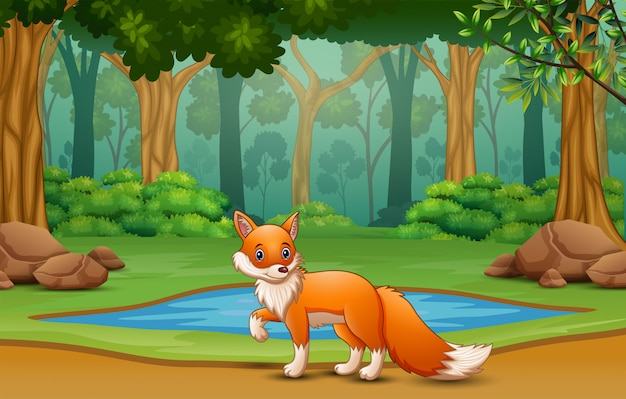 Kreskówka lisa żyjącego w dżungli