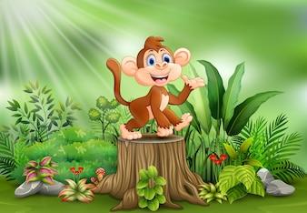 Kreskówka małpy obsiadanie na drzewnym fiszorku z zielonymi roślinami