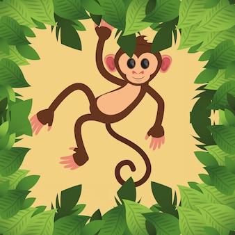 Kreskówka małpa dżungli