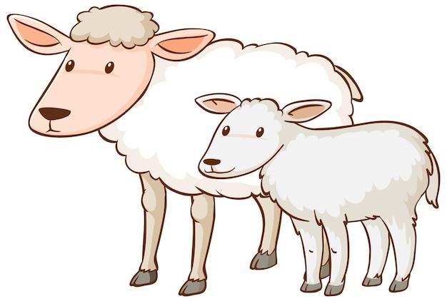 Kreskówka matka i dziecko owiec na białym tle