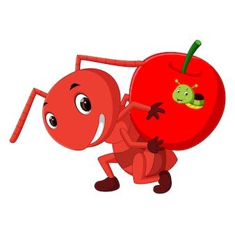 Kreskówka mrówki trzyma jabłko i gąsienica w środku