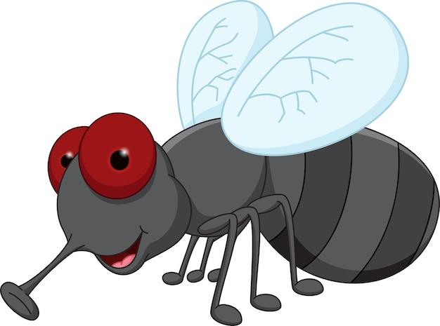 Kreskówka mucha ładny
