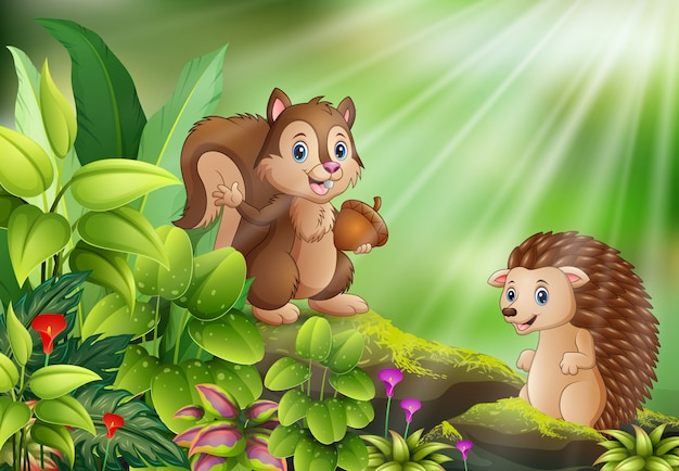 Kreskówka natury scena z wiewiórką i jeżem