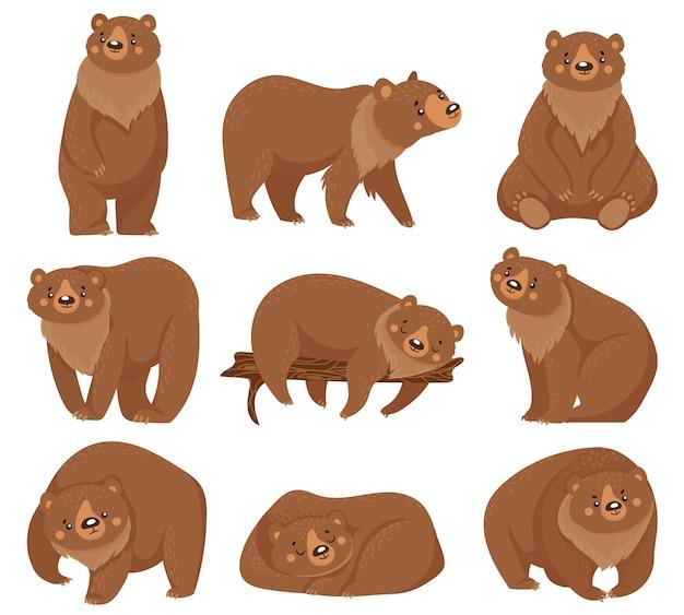 Kreskówka niedźwiedź brunatny. niedźwiedzie grizzly, dzikie zwierzęta leśne drapieżniki i siedzący niedźwiedź ilustracja