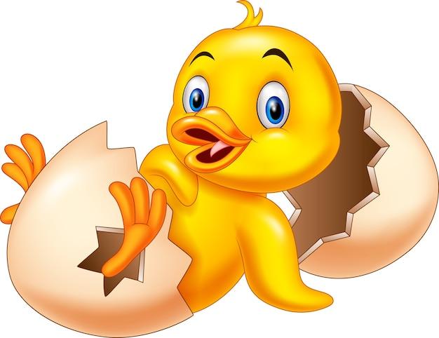 Kreskówka noworodków kaczątko