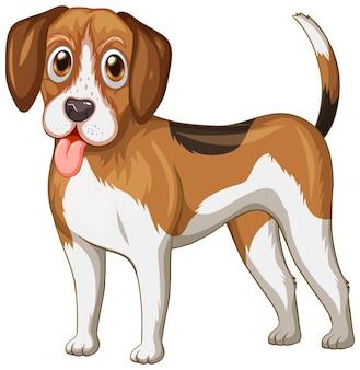 Kreskówka pies beagle na białym tle