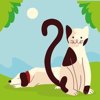 Kreskówka pies i kot