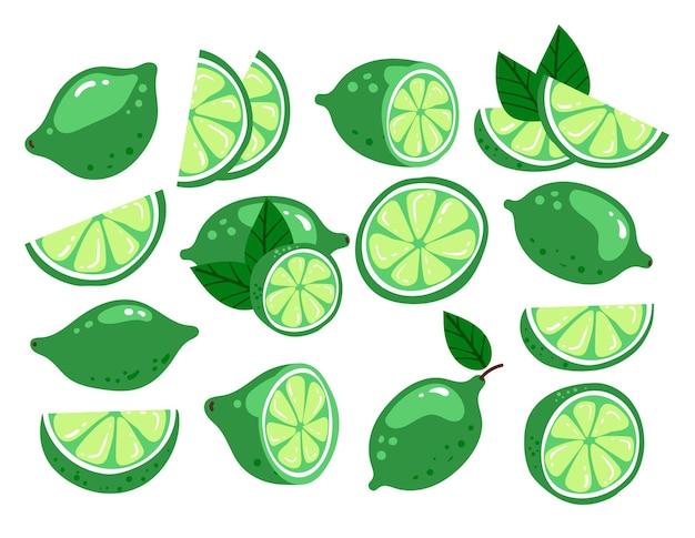 Kreskówka ręcznie rysowane doodle nowoczesny styl limonki