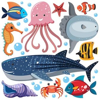 Kreskówka sea life wzór z postacią zwierząt morskich