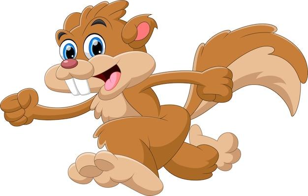 Kreskówka słodkie wiewiórki biegnące na białym tle