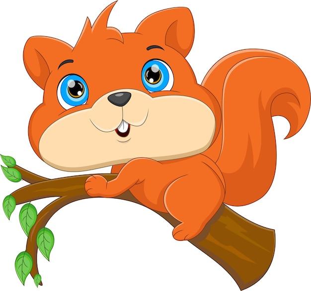 Kreskówka słodkie wiewiórki na drzewie na białym tle