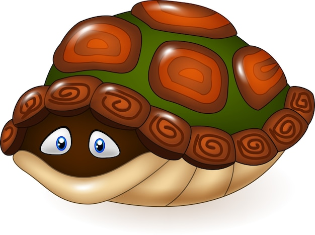 Kreskówka śmieszny żółw chuje w swój skorupie