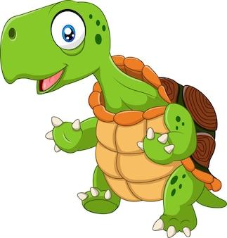 Kreskówka śmieszny żółwia pozować odizolowywam na białym tle