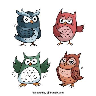 Kreskówka sowa zbiór czterech