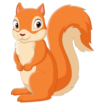 Kreskówka szczęśliwa wiewiórka na białym tle