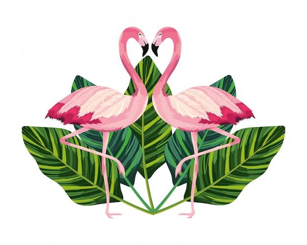 Kreskówka tropikalnych flamingów