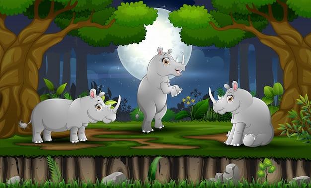 Kreskówka trzy nosorożce korzystających w nocy w lesie