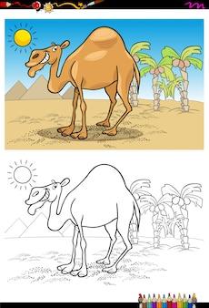 Kreskówka wielbłąd na pustyni kolorowanka