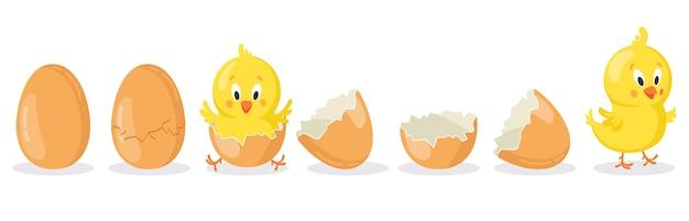 Kreskówka wyklute jajko wielkanocne na białym tle