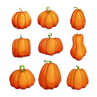 Kreskówka zestaw dyni. słodki clipart na święto dziękczynienia. jesienna kolekcja symboli