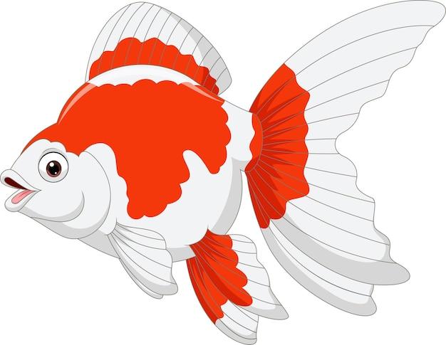 Kreskówka złota rybka na białym