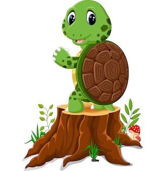 Kreskówka żółw pozuje na drzewnym fiszorku