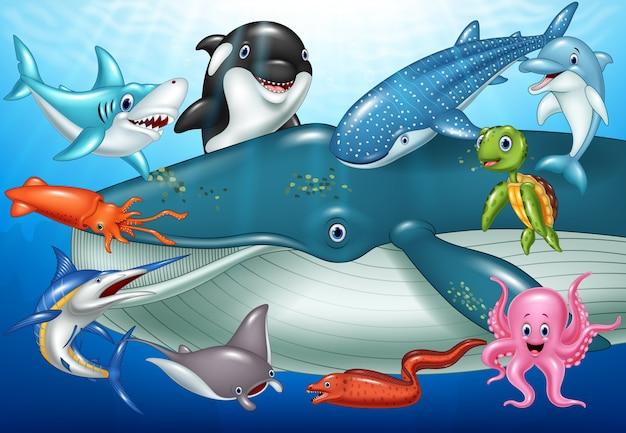 Kreskówka zwierząt morskich
