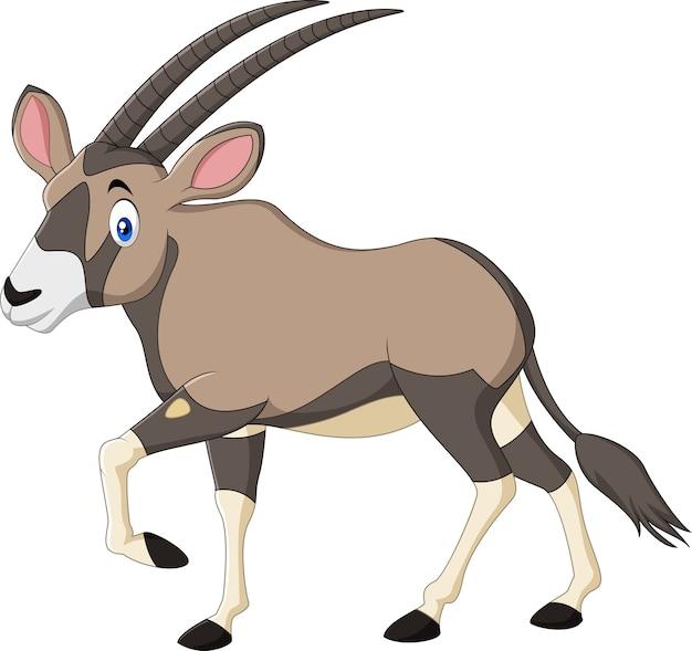 Kreskówki oryx odizolowywający na białym tle