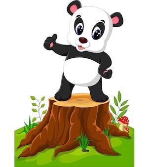 Kreskówki panda pozuje na drzewnym fiszorku