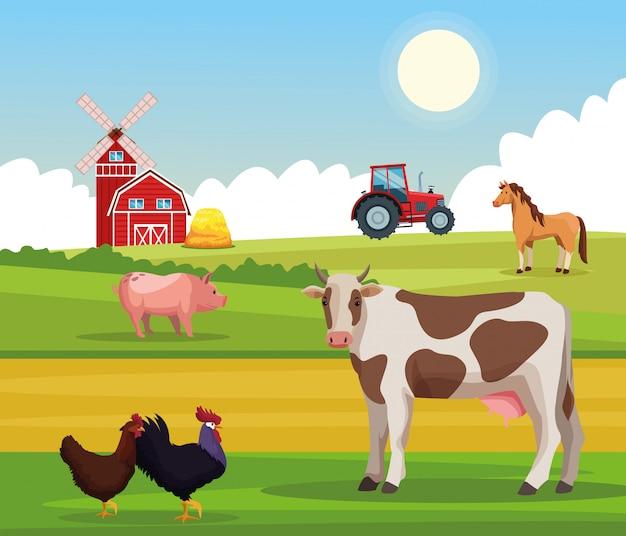 Kreskówki wiejskie