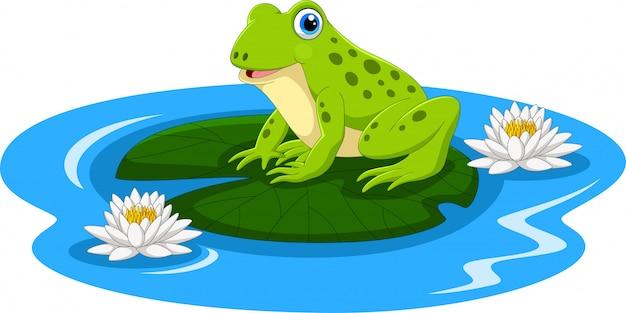 Kreskówki żaba siedzi na liściu