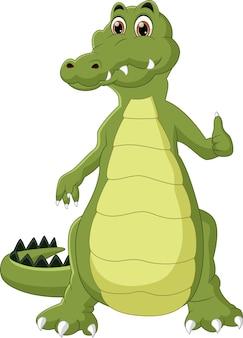 Krokodyl kreskówka kciuki w górę na białym tle