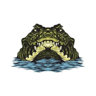 Krokodyl w wodzie na białym tle