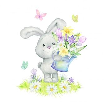 Królik, stokrotki, motyle, przebiśniegi, konwalie, krokusy, liście, trawa, konewka. ilustracja akwarela wiosna
