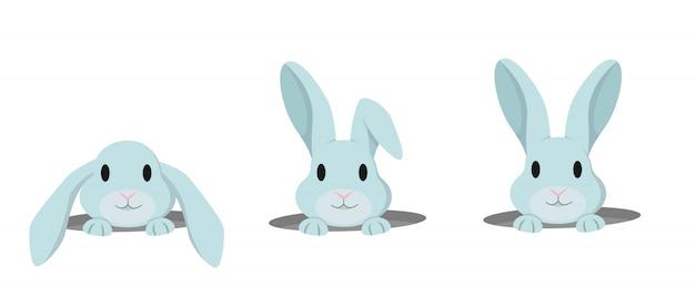 Królik zagląda z dziury. zestaw słodkie króliczki w stylu cartoon.