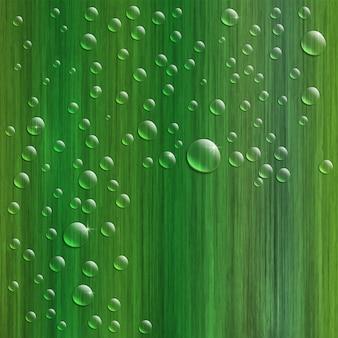 Krople wody na świeżej zielonej trawie