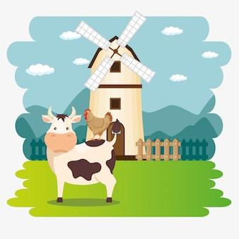 Krowy na scenie rolniczej