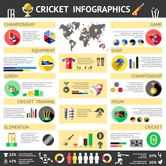 Krykiet kolorowe infografiki